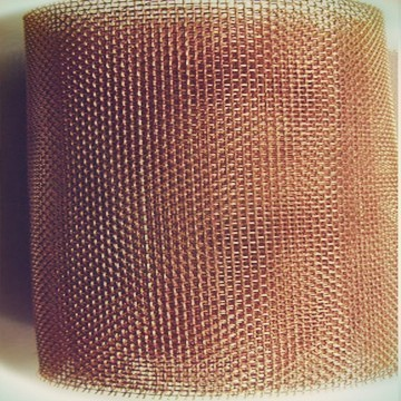 Phosphor bronze wireweb wire mesh coltd 16 mesh phosphor bronze greentooth Image collections